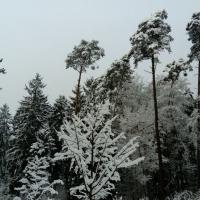 Retzberghütte 01-17 (6)